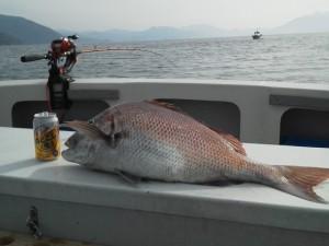 船長上野71cm鯛