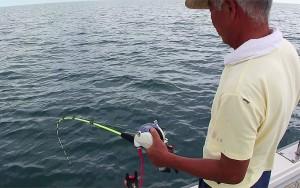 胴付きアジ釣り