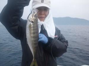 飯村さんのアジ40cm