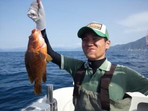 片山さんのアコウ36cm