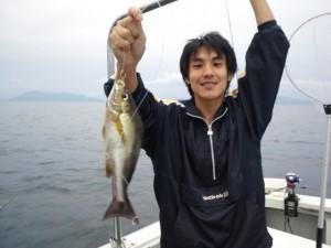 岡田さんのイサキ30cm